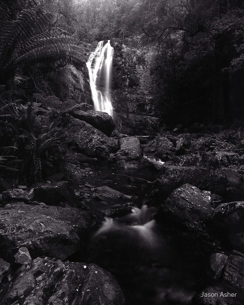 """Mathinna Falls"" ∞ Mathinna, Tasmania - Australia by Jason Asher"