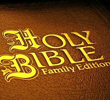 HOLY BIBLE FAMILY EDITION by Darla Fitzgerald