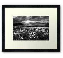 A Leading Light BW Framed Print