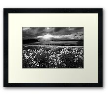 A Leading Light BW Framed Print