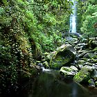 Erskine Falls by John Sharp