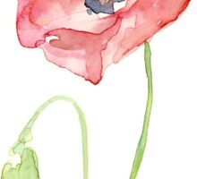 Red Poppy Watercolor Floral Painting  Sticker