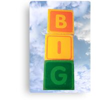 big assorted toy childs play blocks Canvas Print