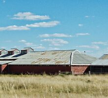 BERIDA WOOLSHED by Helen Akerstrom Photography