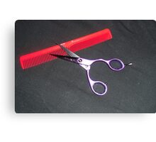Scissors and Comb Canvas Print
