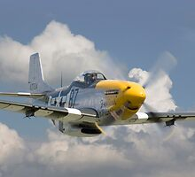 P51D Mustang - Comin' at Ya by Pat Speirs