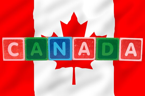 Morrbyte portfolio canada and flag in toy block letters