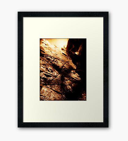 Lets Climb Framed Print