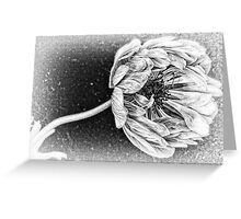 Whispers of Love Greeting Card