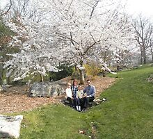 Cherry Tree At rock City by ack1128