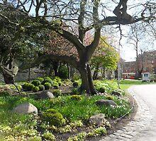 Museum Garden by Alison Ward
