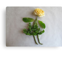 Playing With Vegetables : Canvas Print