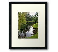 Pond landscape Framed Print