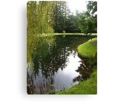 Pond landscape Canvas Print