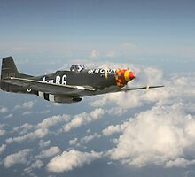 P51D Mustang - Old Crow by warbirds
