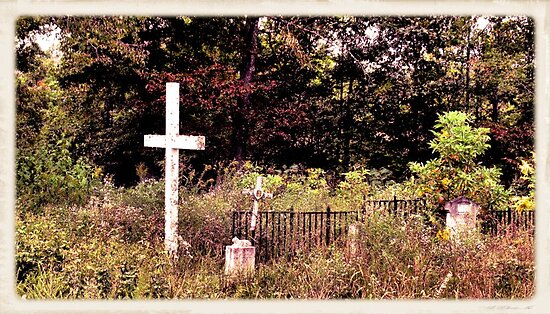 """THE CEMETERY""... a Series... #13 Hinds Valley Cemetery Clothed in Nature's Garment by © Bob Hall"