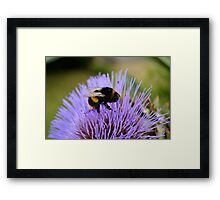Oh what a wonderful joy to be... Framed Print
