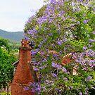 Mulbring - Hunter Valley by CandiceRose