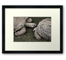 Its a love thang... Framed Print