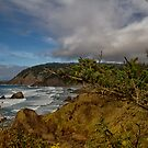 Oregon Coast by Marzena Grabczynska Lorenc