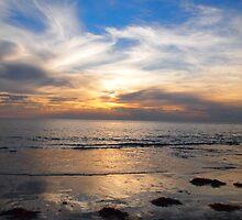 Largs Bay by Natasha M