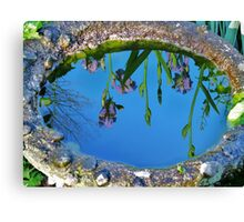 Water on the Iris on the water Canvas Print
