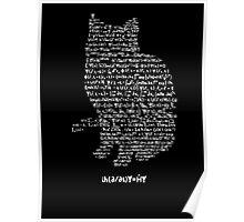 Schrodinger's equation Poster