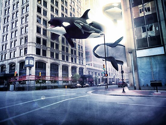 City of whales by hotamr