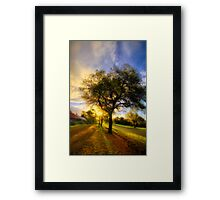 Country Golden Hour Framed Print