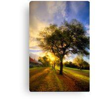 Country Golden Hour Canvas Print