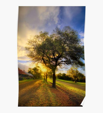 Country Golden Hour Poster
