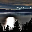 Moonlight on the Lake by Barbara  Brown