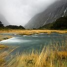 Fiordland Torrent by Michael Treloar