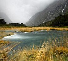 Fiordland Torrent by Michael Treloar