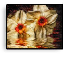 Daffodip Canvas Print