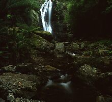"""Mathinna Falls"" ∞ Mathinna, Tasmania - Australia by Jason Asher"