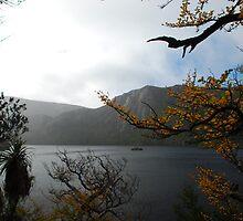 Dove Lake, Tasmania by Kylie Reid