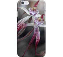 Chapman's Spider orchid iPhone Case/Skin