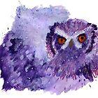 Owl by cadva
