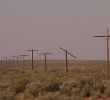 Telephone poles by Alexa Clement