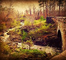 The Aqueduct at Chockoyotte Creek by Lea  Weikert