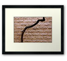 On The Up And Up Framed Print
