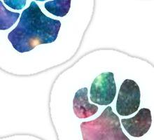 Galaxy Paws Sticker