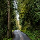 Deerhorn Road by Charles & Patricia   Harkins ~ Picture Oregon
