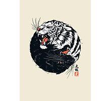 Tachi Tiger Photographic Print