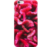 red flower  tones highkey iPhone Case/Skin