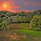 Landscape Painting - Balducci Sunset 2011 - 16 x 20 Oil by Daniel Fishback