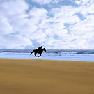 horse riding on kerry shore by morrbyte