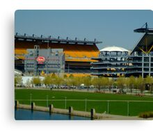 Lets go Steelers Canvas Print