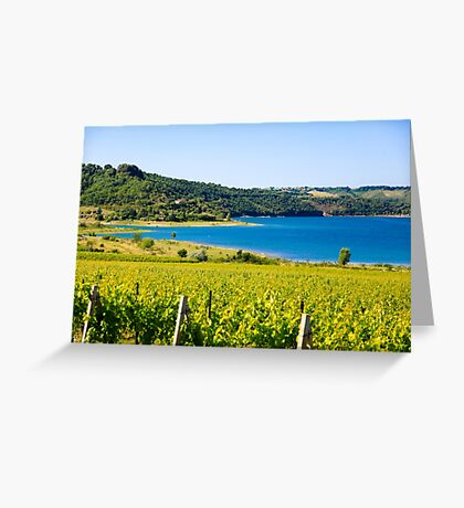 Grapevines in a vineyard. Photographed in Tuscany, Italy Greeting Card